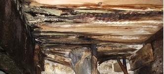 Schimmel door vochtige onderkant houten vloer